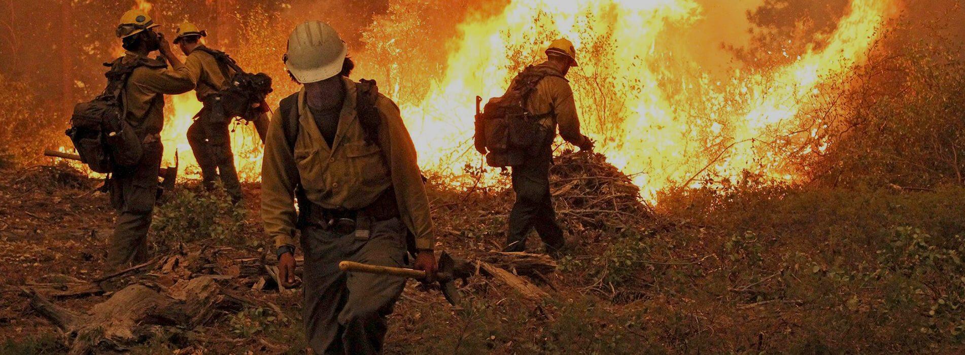 fire safety VFP